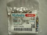 Schmiernippel Nippelzylinder Kubota KX41-3 06613-10010 066131001-0